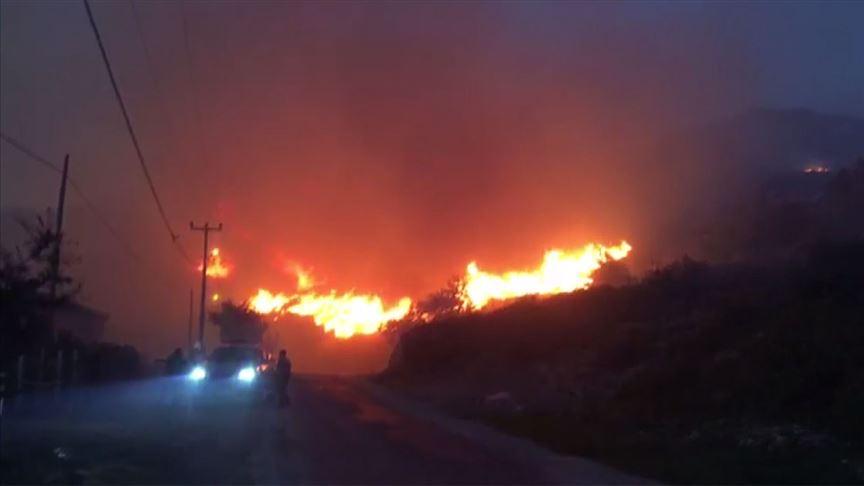 Marmara Adası yangını kontrol altında