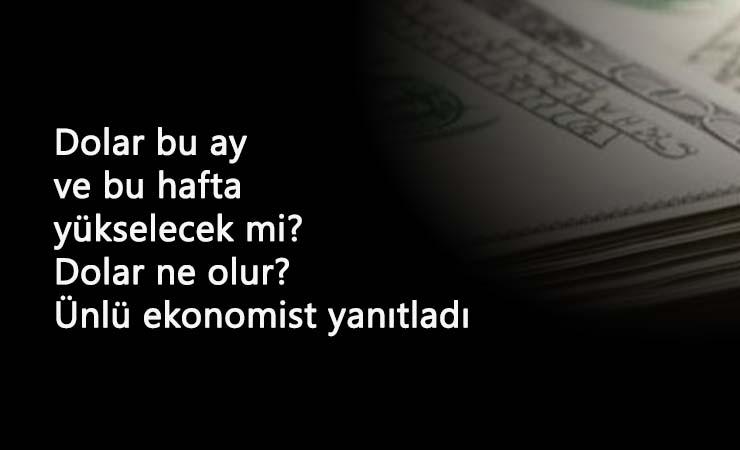 2 Kasım'dan sonra dolar ne olur? Dolar daha çok yükselir mi? Ünlü ekonomist yorumladı