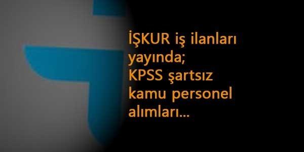 İŞKUR'dan kamu ilanları başladı: DSİ-Üniversite-Et ve Süt Kurumu-TEİAŞ