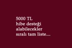 5000 TL hibe desteği kimler alabilecek? Sıralı tam liste