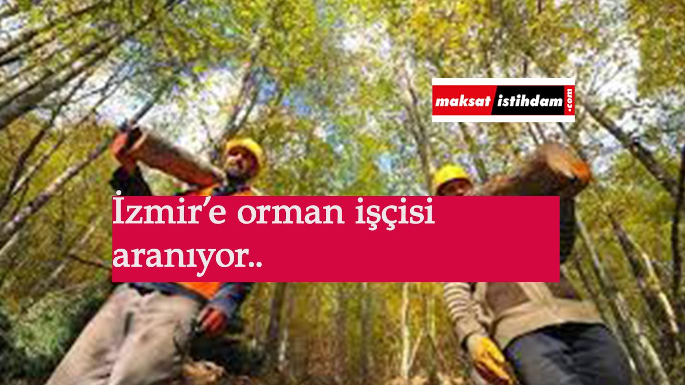 İzmir'e orman işçisi alınacak: OGM işçi alımı sürüyor